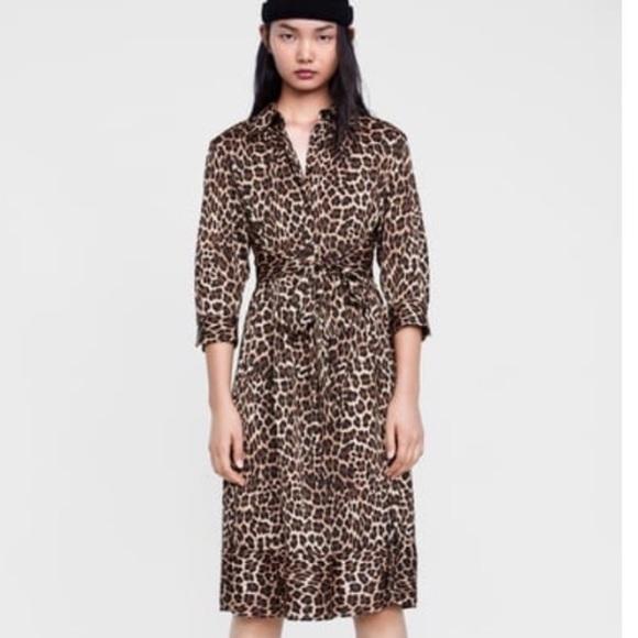 ad153aaf5f2 Zara Leopard Dress Sz Medium